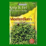 Проростки  ГОРЧИЦА   (Mosterdkers)  25 грамм
